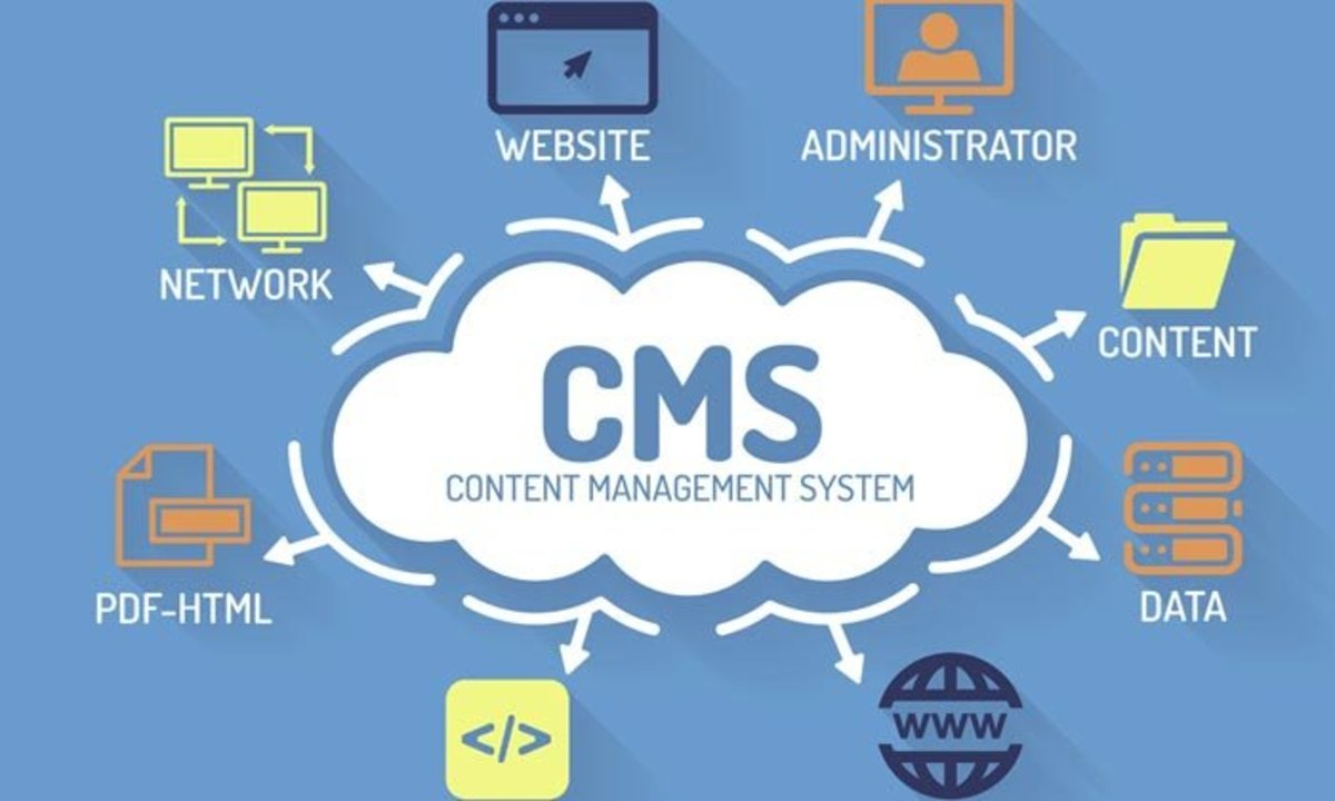 The Popularity of WordPress as CMS